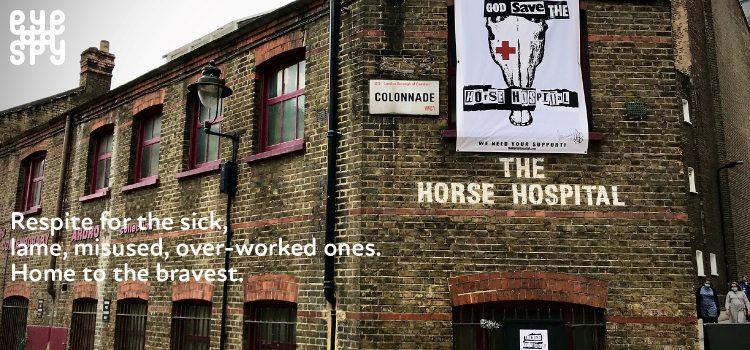 EYE SPY: Neil Baker – The Horse Hospital