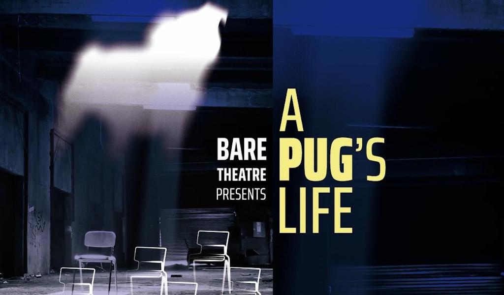 RADA MA Theatre Lab: A Pug
